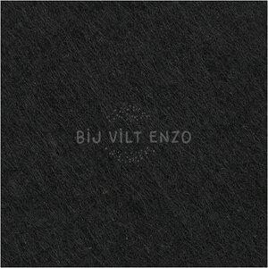 3mm dik acryl vilt Zwart Bij vilt enzo