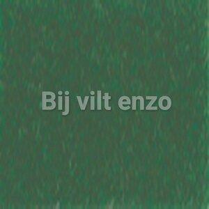 3mm Dik Wolvilt Donker Groen - Bij vilt enzo