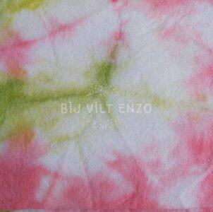 sprookjesvilt voorjaarsgroen roze Bij vilt enzo
