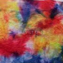 Sprookjesvilt Regenboog Kleurrijk Bij vilt enzo