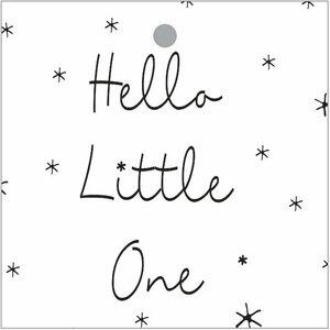 Cadeaukaartje Hello Little One Bij vilt enzo