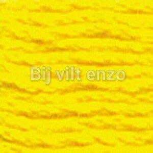 Venus spijtgaren Geel