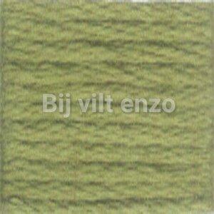 Venus splijtgaren Groen