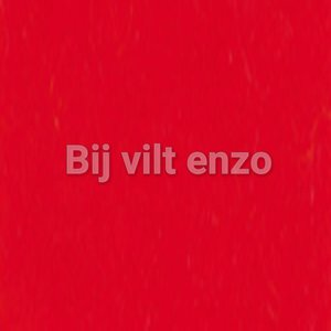 3 mm dik wolvilt Rood Bij vilt enzo